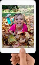 Apple iPad mini 64GB Wi-Fi + Cellular MD542