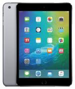 Apple ������� iPad mini 4 128Gb WiFi Gold (MK9Q2RU/A) 1